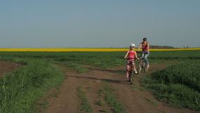 A sports family on bicycles. stock video footage