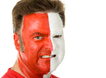 Sports Fan In Face Paint Stock Photography