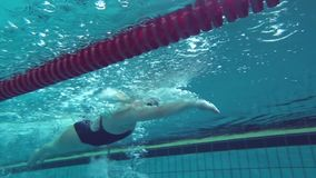 Sports female swimmer floating in blue water pool during practicing before race. Underwater view stock footage