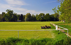 Sports field with roller Stock Photo