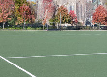 Sports Field Royalty Free Stock Photo