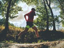 Sports figure man is running in the park alley in Sunny morning. royalty free stock photography