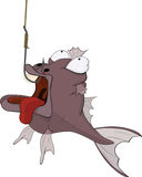 Sports fishing and predatory fish. Cartoon. The surprised fish got on a hook Stock Photos