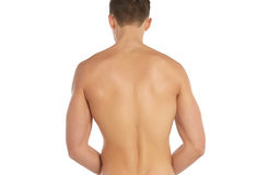 Sports and fitness topic: naked sporty man standing back isolated on a white background in the studio, human anatomy Stock Photos