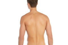 Sports and fitness topic: naked sporty man standing back isolated on a white background in the studio, human anatomy Royalty Free Stock Photography