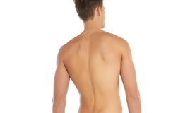 Sports and fitness topic: naked sporty man standing back isolated on a white background in the studio, human anatomy Royalty Free Stock Photo