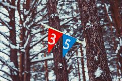 Sports flags on the tree. Felt Pennant with Copy Space  on Stock Image