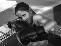 Sports Girl With Boxing Gloves Stock Images
