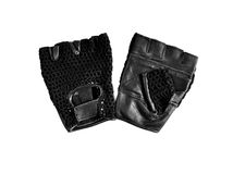 Sports gloves Stock Image