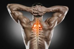 Sports and healthcare. Spine pain. royalty free stock photography