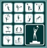 Sports icons set. Stylized sports icons set isolated on a green background Stock Image