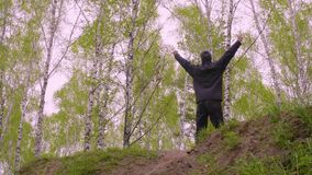 Sports man running on hill and raising hands up on birch trees background. Cheerful man with stretching hands up enjoying birch grove landscape stock video