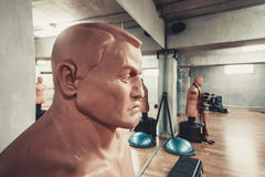 Sports mannequins in gym Stock Photography