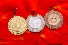 Sports medals on red petals Royalty Free Stock Photography