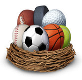 Sports Nest. Concept with a football basketball hockey puck baseball tennis soccer golf ball in the shape of an egg as a symbol of health and fitness through stock illustration