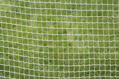 Sports net background Stock Images