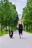 Sports outdoor - young woman running with dog in park. Urban sports - woman running for better fitness together with her dog in the city park on a cloudy summer Royalty Free Stock Photo