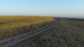 Sports outdoors, sportswoman and sportsman run along road near rapeseed blooming field during cardio workout in nature. Aerial survey stock video
