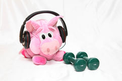 Sports piggy. Funny athletic pink pig with dumbbells doing her exercises stock images
