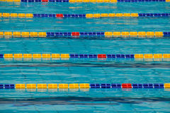 Sports pool. Particular lane of an Olympic swimming pool Stock Photography