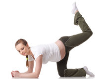 Sports pregnant young woman. Fitness. Stock Photos