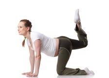 Sports schwangere junge Frau. Eignung. stockbilder