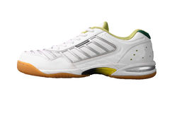 Sports shoe Royalty Free Stock Image