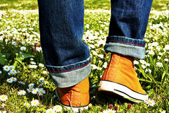Sports Shoe and grass Stock Photo