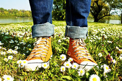 Sports Shoe and grass Royalty Free Stock Photo