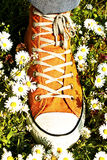 Sports Shoe and grass Royalty Free Stock Photos