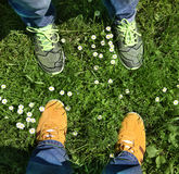 Sports shoes on green grass. Part of legs in sports shoes on green grass around camomiles Stock Photo