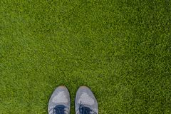 Sports shoes sneakers on fresh green grass. Sports in the open a royalty free stock image