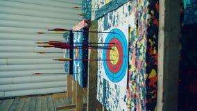 Arrows at the target. Sports shooting arrows at the target in the shooting range. Closeup stock footage