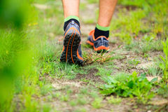 Sports shows running walking on trail. Sports shoes walking or jogging on green grass, man runner cross country running on trail in summer forest. Athlete male Stock Images