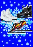 Sports skates Royalty Free Stock Image