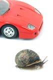 Sports snail Royalty Free Stock Photography