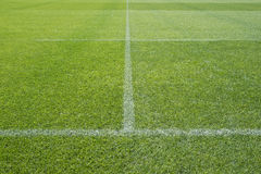 Sports stadium field markings Stock Images