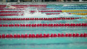 Sports swimming close to side view of the low angle stock footage