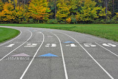 Sports track in autumn woods Stock Photography