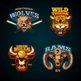 Sports vector labels with heads of animals. Wolf, bulls, ram and tiger emblems Royalty Free Stock Photos