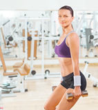Sports woman lifting weights in the gym Royalty Free Stock Images