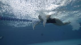 Sports woman swimming butterfly stroke in blue water pool underwater view. Close up female swimmer floating butterfly stroke on water path in blue swimming stock video footage