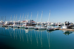 Sports yachts in Sochi port. Russia Royalty Free Stock Photography