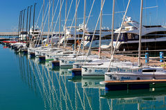 Sports yachts in Sochi port. Russia Royalty Free Stock Image