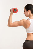 Sports young woman with dumbbells. human half Royalty Free Stock Image
