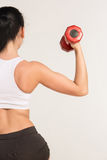Sports young woman with dumbbells. human half Royalty Free Stock Images