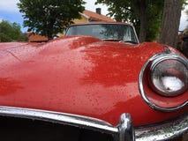 Sportscar. Jaguar E-type Hood Stock Images