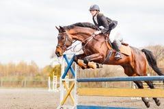 Sportsgirl joven del lomo de caballo que salta en el salto de la demostración Foto de archivo libre de regalías