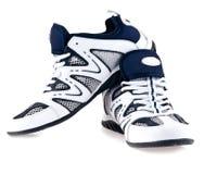 sportslig sko Royaltyfri Fotografi
