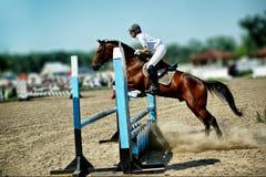 Sportsman. Horse theme: jockeys, horse races, speed royalty free stock image